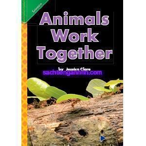 Animals Work Together