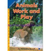 Animals Work and Play