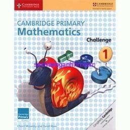 Cambridge-Primary-Mathematics-Challenge-1